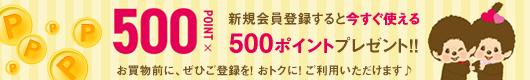 新規会員登録すると今すぐ使える500ポイントプレゼント!!