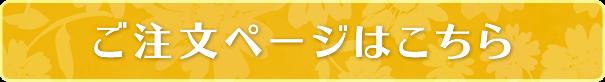 フラワーギフト2021 モンチッチくん 商品ページへ