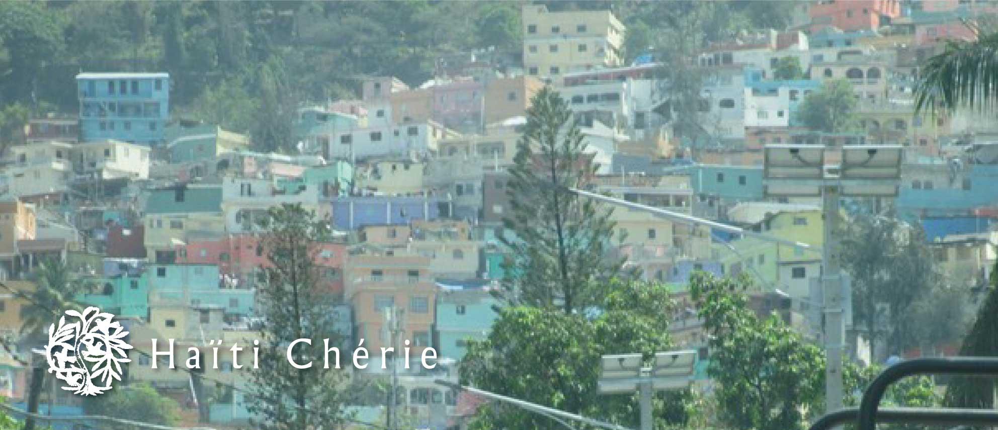 Haiti Cherie(ハイチシェリー)