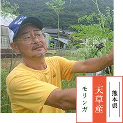 生産者 / 四方田 徹