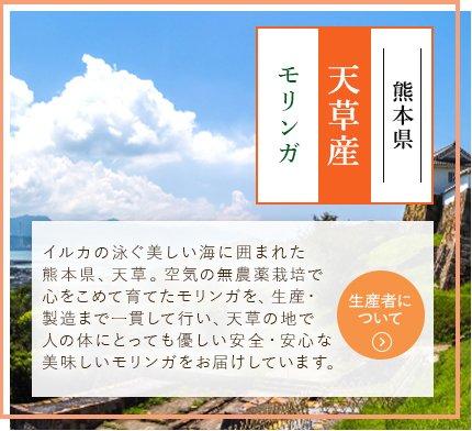熊本県 天草産 モリンガ イルカの泳ぐ美しい海に囲まれた熊本県、天草。空気の無農薬栽培で心をこめて育てたモリンガを、生産・製造まで一貫して行い、天草の地で人の体にとっても優しい安全・安心な美味しいモリンガをお届けしています。