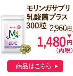 モリンガサプリ乳酸菌プラス300粒