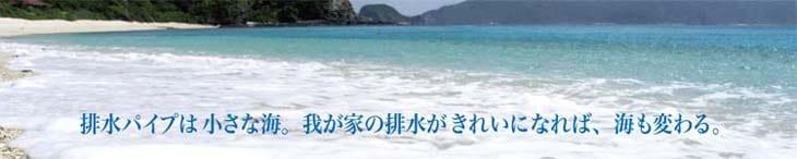 排水パイプは小さな海。我が家の排水がきれいになれば海も変わる。