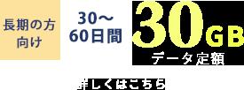 30〜60日 30GB