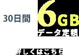 30日間6GB データ定額