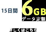 6日間6GB データ定額