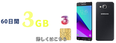 60日間 3G