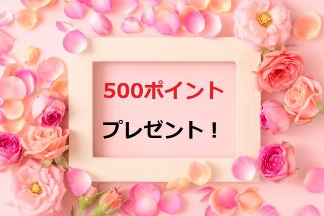敷島屋500ポイント