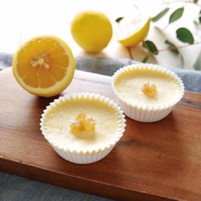 オーガニックレモンピールのアイスチーズケーキ(Seed)