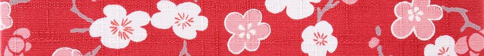 ご祝儀袋 結姫 musubime 白梅(コットン)赤華小梅