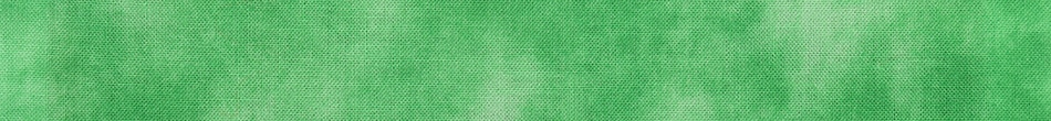 ご祝儀袋 結姫 musubime 白梅(コットン)絞染新緑