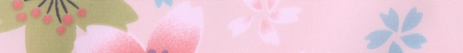 ご祝儀袋 結姫 musubime 青竹(ポリエステル) 薄桜華火 蝶