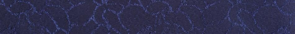 ご祝儀袋 結姫 musubime 青竹(ポリエステル)藍色輝華