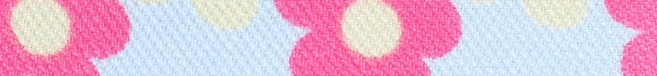 ご祝儀袋 結姫 musubime 高砂(ポリエステル)小花�(水色) 蝶