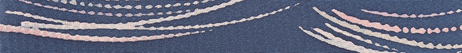 ご祝儀袋 結姫 musubime 赤松(シルク)絹織紺柄 蝶