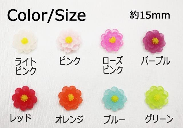 サイズ&カラー