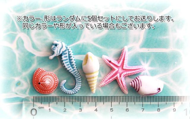 海デコパーツ/商品詳細