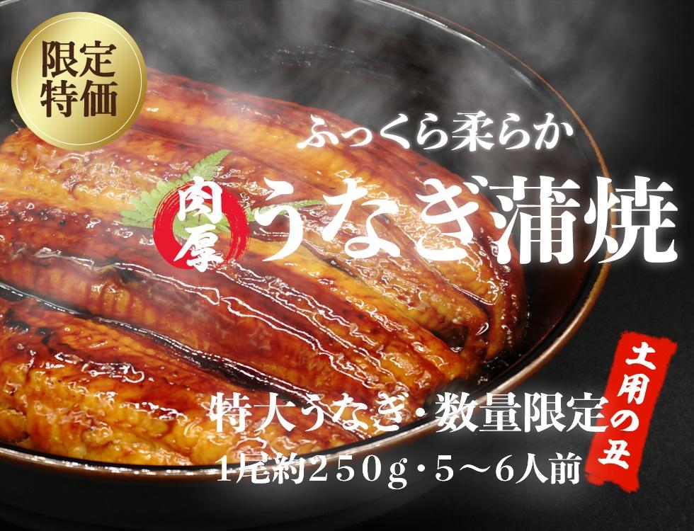 今年も熱い!暑い季節も乗り切ろう! 特大サイズの鰻フェア 業務用食品・冷凍食品通販 ナカヤマフーズオンライン