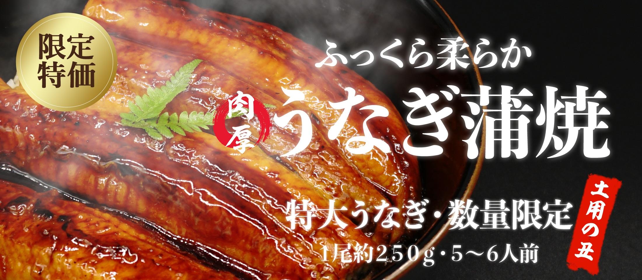 今年も熱い!暑い季節も乗り切ろう!限定特大サイズの鰻特集 業務用食品・冷凍食品おすすめ 業務用食品・冷凍食品の通販 |ナカヤマフーズ