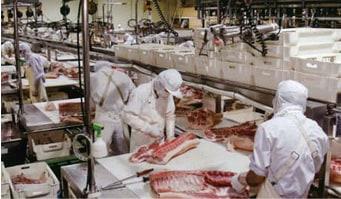 豚肉処理工場