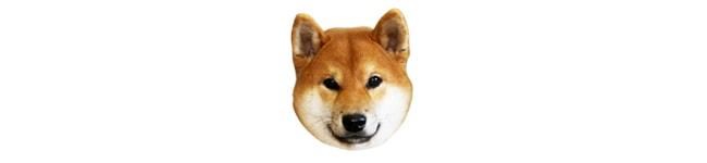 犬クッション画像
