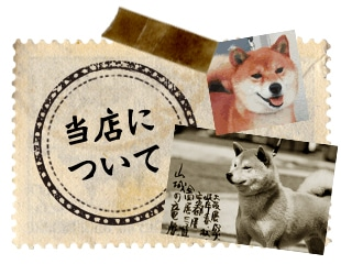 Native Dogとは