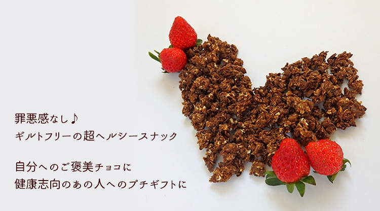 かりかり発芽フラックス チョコ風味