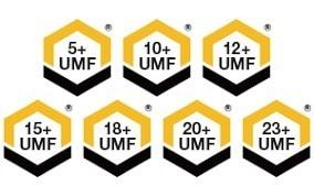 UMFとは