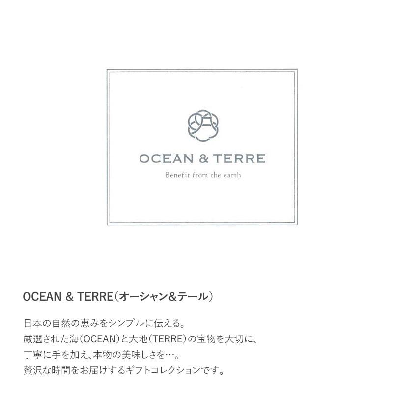 OCEAN & TERRE だし茶漬けセットL  お茶漬け 高級 ギフト プチギフト 甘くないもの 詰め合わせ グルメ 和食 プレゼント 贈り物 お中元 お歳暮 内祝い 引出物
