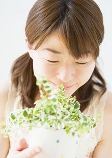 花粉の季節に負けない、花粉対策サプリメント「ネトルリリーフ」