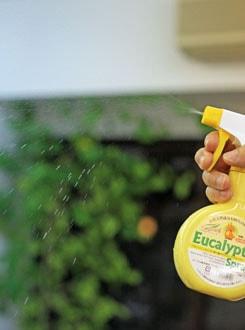 ハウスダスト・花粉対策なら、オーブス・ユーカリプタススプレー
