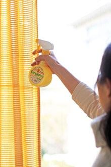 ユーカリスプレーで、除菌・消臭・花粉対策