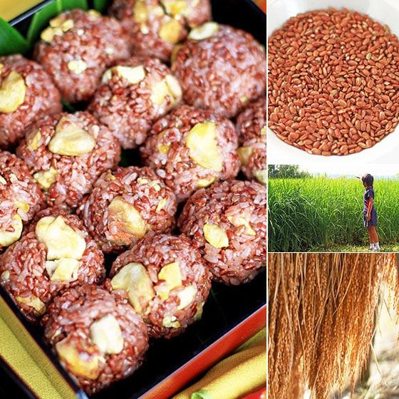 西日本産、無農薬・無肥料、自然栽培「赤うるち米」<br>