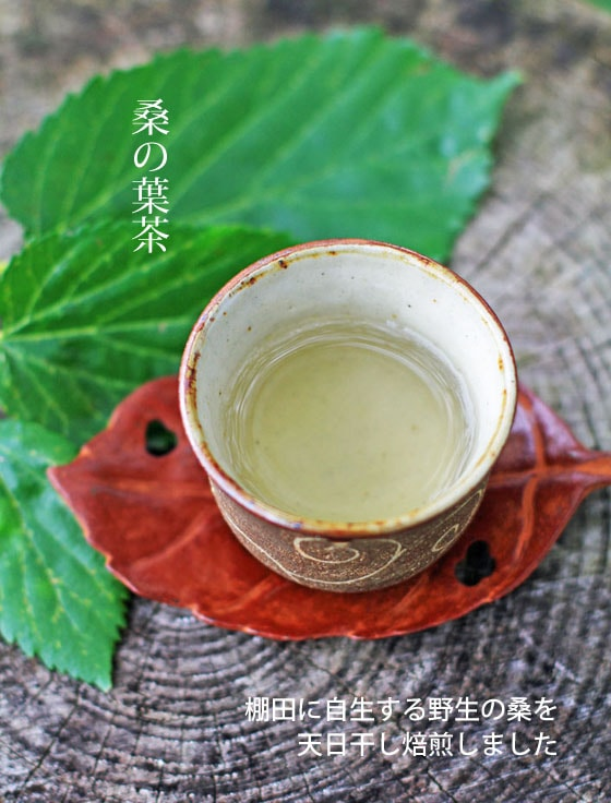 岡山県産 無農薬・無肥料・天日干し、自然栽培「桑の葉茶」