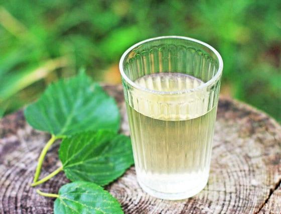 無農薬・無肥料・天日干し・自然栽培は、吉田自然農園の「桑の葉茶」