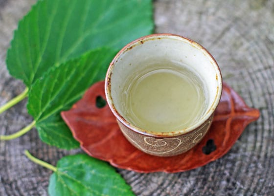 吉田自然農園の「桑の葉茶」は、無農薬・無肥料・天日干し・自然栽培