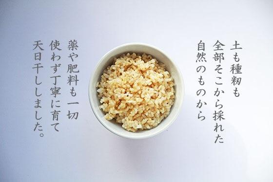 無農薬・無肥料・天日干しによる、岡山県久米南町の吉田自然農園産の自然栽培のお米あきたこまち