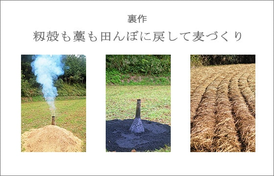 吉田自然農園の米あきたこまちは、無農薬・無肥料による自然栽培