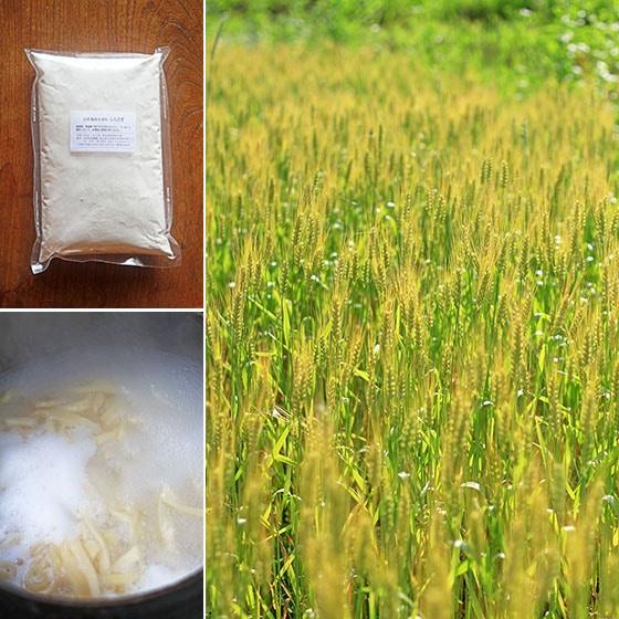 無農薬・無肥料の自然栽培、岡山県産の小麦粉しらさぎ