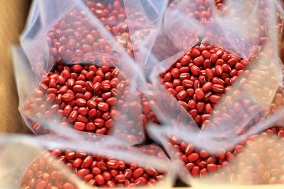 無農薬・無肥料の自然栽培、西日本産の小豆