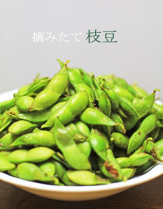 無農薬・無肥料よる、岡山県久米南町の吉田自然農園産の自然栽培の枝豆