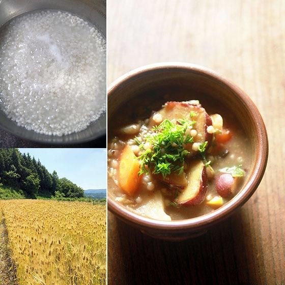 無農薬・無肥料・天日干し、吉田自然農園の自然栽培「大麦丸粒・大麦粉」