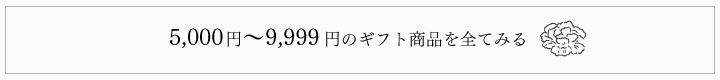 5000~9999円ギフト