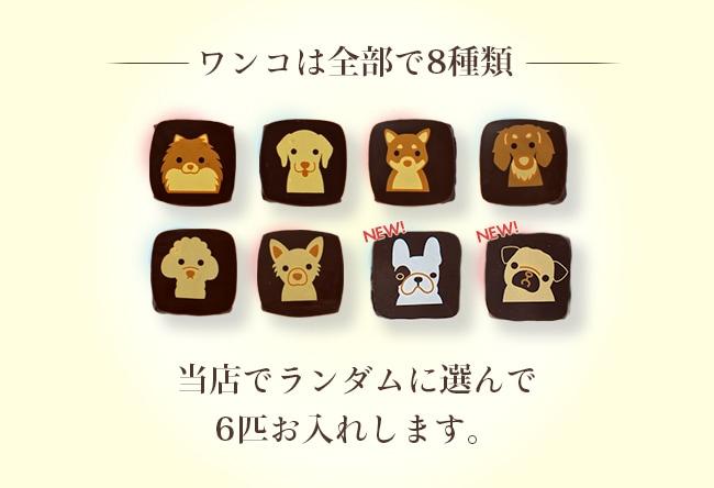 犬チョコレート1