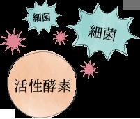 細菌 活性酸素