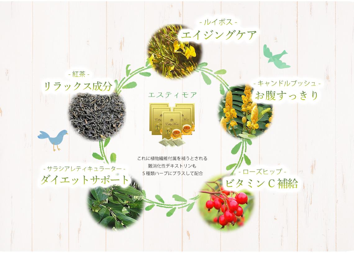 -ルイボス- エイジングケア -紅茶- リラックス成分 -キャンドルブッシュ- お腹すっきり -サラシアレティキュラーター- ダイエットサポート -ローズヒップ- ビタミンC補給 エスティモア これに植物繊維付属を補うとされる難消化性デキストリンも5種類ハーブにプラスして配合