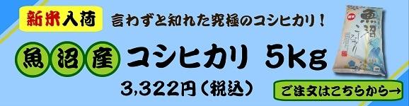 2020魚沼産コシヒカリ新米