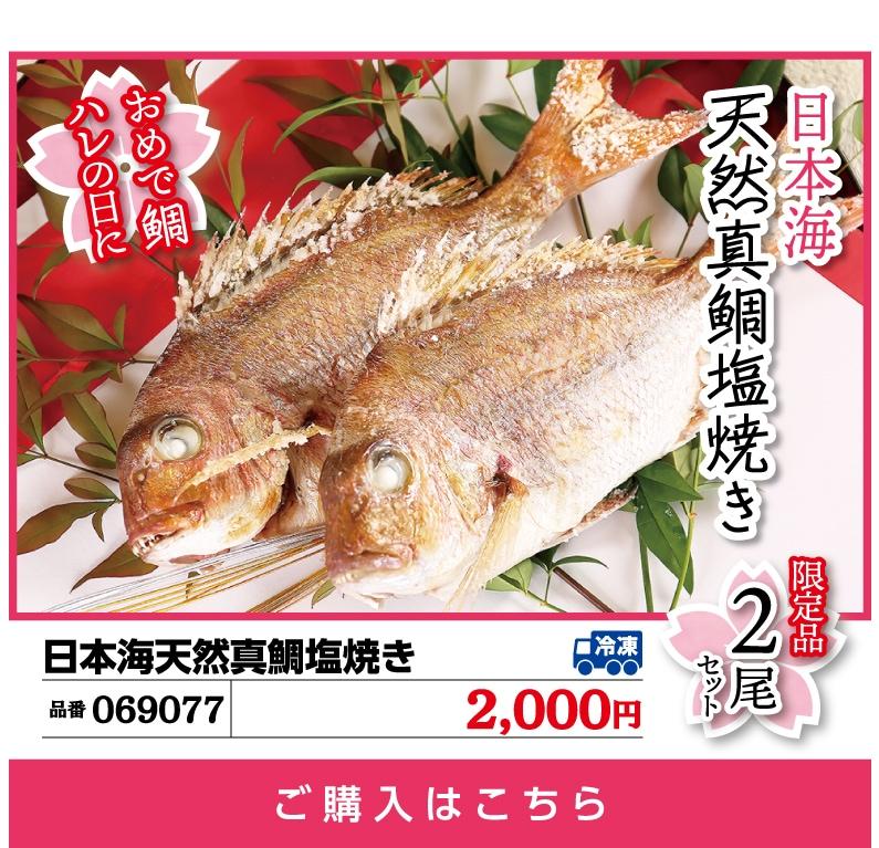 日本海天然真鯛塩焼き