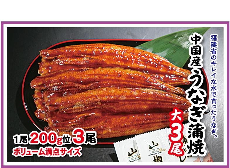 中国産うなぎ蒲焼き3尾