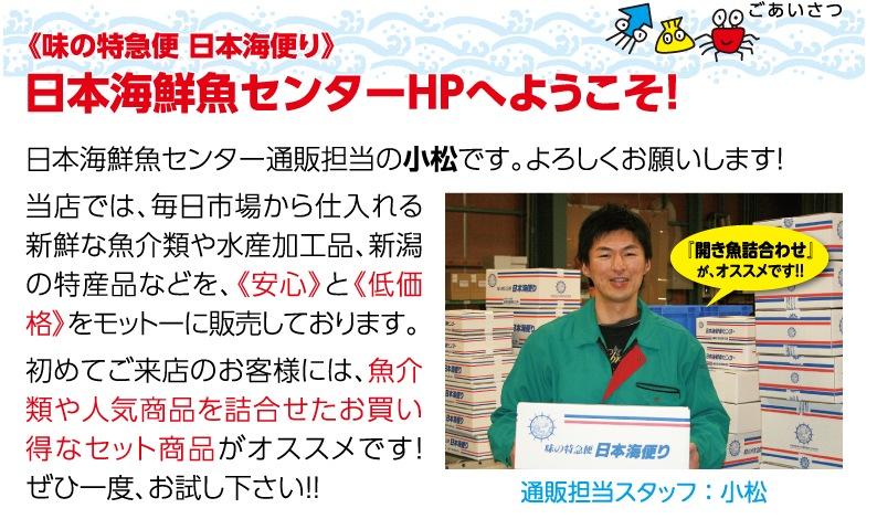日本海鮮魚センターHPへようこそ!